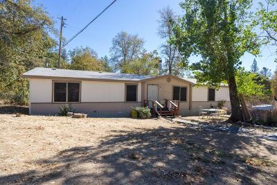 Placerville Mobile/Manufactured For Sale: 2901 Parkway Drive