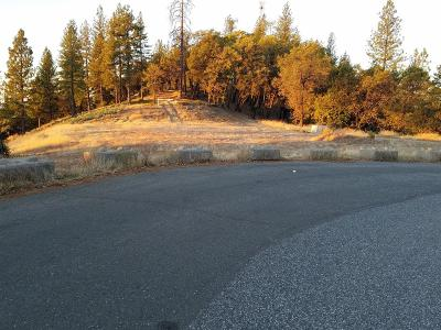 Colfax Residential Lots & Land For Sale: Sierra Sky Drive