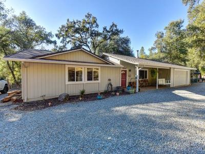 Shingle Springs Single Family Home For Sale: 4461 Tennessee Street