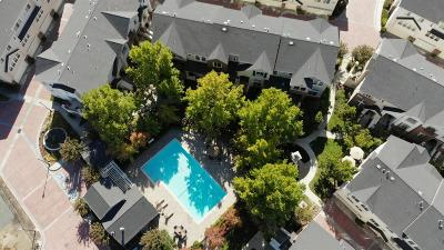 Livermore Condo For Sale: 274 Wood Street