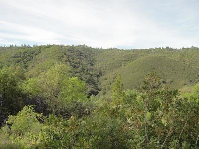 Mountain Ranch Residential Lots & Land For Sale: 250 - Acres Sheep Ranch Road