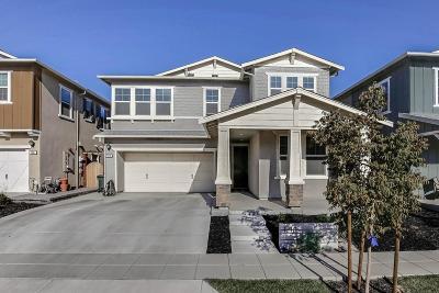Mountain House Single Family Home For Sale: 1210 South Olson Avenue