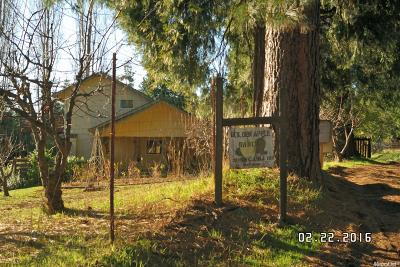Camino Single Family Home For Sale: 2058 Cable Road