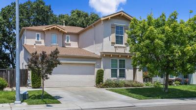 Stockton Single Family Home For Sale: 1433 Green Ridge Drive