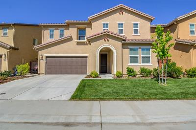 Placer County Single Family Home For Sale: 5233 Maestro