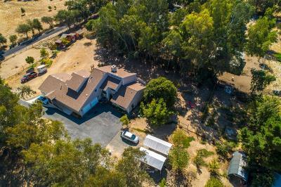 Orangevale Single Family Home For Sale: 7827 Peerless Avenue