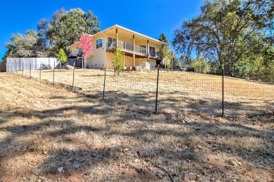 Placerville Single Family Home For Sale: 4332 White Rose Lane