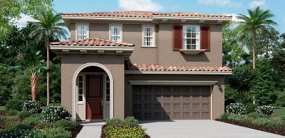Mountain House Single Family Home For Sale: 288 Bella Serata Avenue