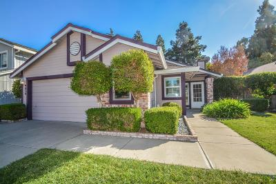 Elk Grove Single Family Home For Sale: 9039 Duovo Way