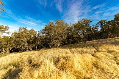 El Dorado Hills Residential Lots & Land For Sale: 700 Da Vinci Court