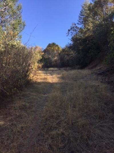Placerville Residential Lots & Land For Sale: 520 Forni Road