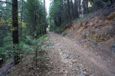 Pollock Pines Residential Lots & Land For Sale: 5250 Sly Park Road
