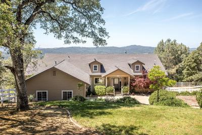 Placerville Single Family Home For Sale: 4650 River View