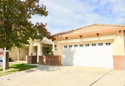 Elk Grove Single Family Home For Sale: 7629 Brabham Way