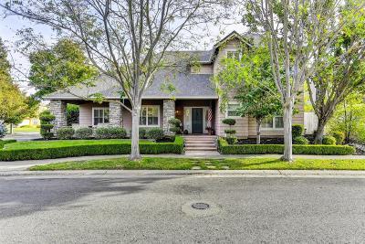 Elk Grove Single Family Home For Sale: 9201 Daylor Street