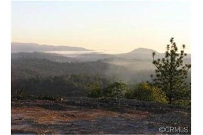 Amador County Residential Lots & Land For Sale: 19287 Christina Pines Court