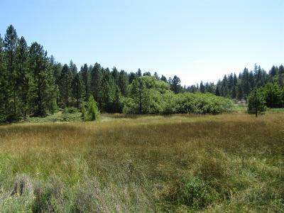 Grass Valley Residential Lots & Land For Sale: 14812 Dog Bar Road