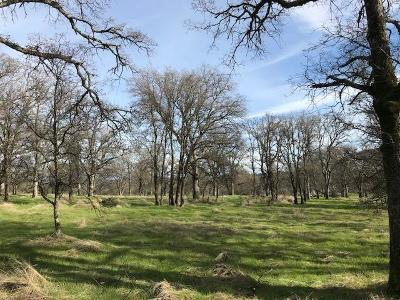 Auburn Residential Lots & Land For Sale: 10140 Coyote Ridge Court