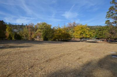 Murphys Residential Lots & Land For Sale: 116 Stone Ridge Court