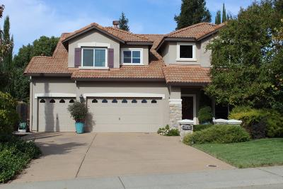 Rocklin Single Family Home For Sale: 2309 Holly Drive