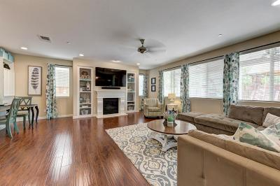 Roseville Single Family Home For Sale: 4048 Ice House Way