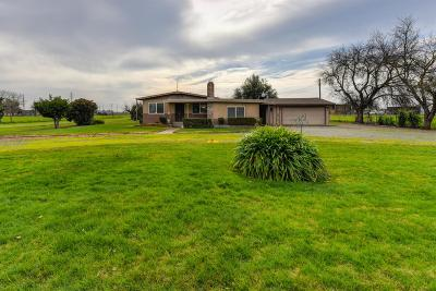 Sacramento Single Family Home For Sale: 9210 Tokay Lane