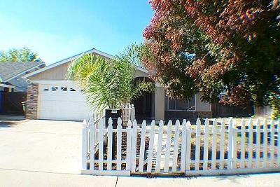 Ceres Single Family Home For Sale: 3221 Rose Avenue