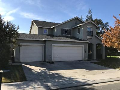 Waterford Single Family Home For Sale: 13206 Rivercrest Drive