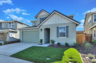 Lathrop Single Family Home For Sale: 18146 Amador Drive