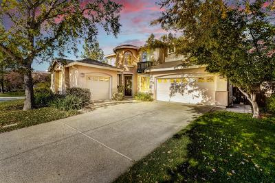 El Dorado Hills Single Family Home For Sale: 2114 Armsmere Circle