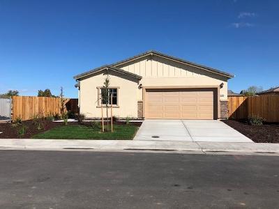 Sacramento Single Family Home For Sale: 7905 Springarden Way