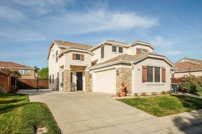 Elk Grove Single Family Home For Sale: 9352 Roan Ranch Circle