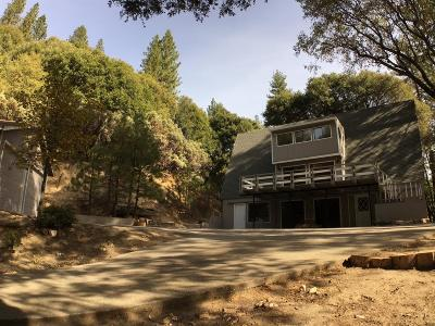 Nevada City Single Family Home For Sale: 16320 Gold Bug Road
