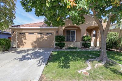 Rocklin Single Family Home For Sale: 6423 Cormorant Circle