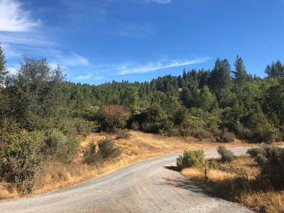 Placerville Residential Lots & Land For Sale: 6220 Shoo Fly Road