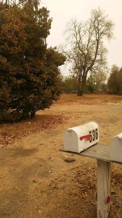 Sacramento County Residential Lots & Land For Sale: 536 Wilson Avenue