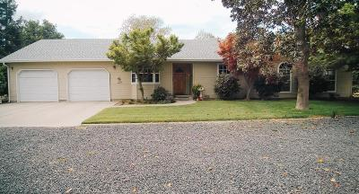 Escalon Single Family Home For Sale: 22029 Brennan Road