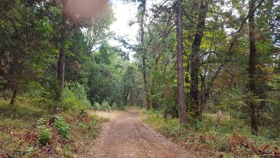 Pine Grove Residential Lots & Land For Sale: No Address Available
