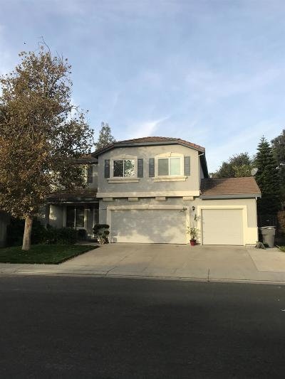 Davis, Woodland Single Family Home For Sale: 876 Wallace Drive