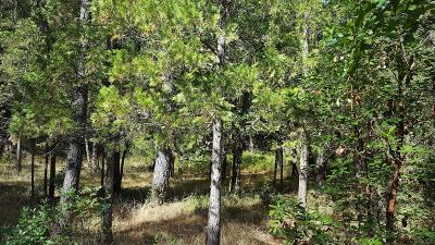 Amador County Residential Lots & Land For Sale: No Address Avail
