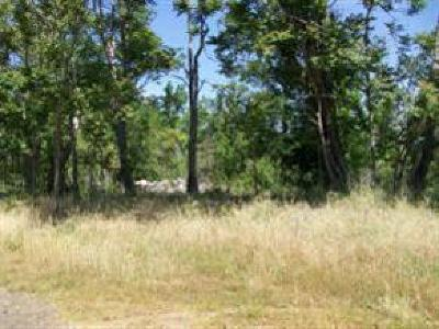 Sonora Residential Lots & Land For Sale: Portion Of Lot 1 Springfield Road