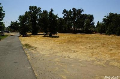 Sacramento County Residential Lots & Land For Sale: 1229 Michael Lane