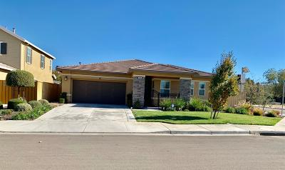 Tracy Single Family Home For Sale: 2094 Foxclove Drive