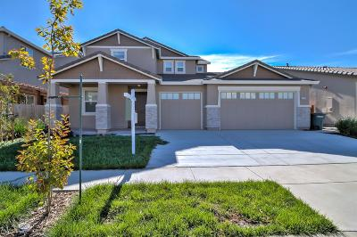 Patterson Single Family Home For Sale: 1250 Blue Flax Drive