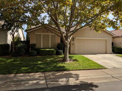 Rocklin Single Family Home For Sale: 3951 Coldwater Drive
