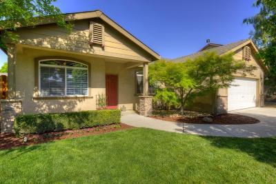 Modesto Single Family Home For Sale: 1413 Ramsgate Drive