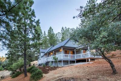 Cool Single Family Home For Sale: 2789 Cascade Trail