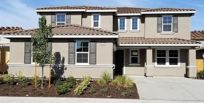Elk Grove Single Family Home For Sale: 8737 Presto