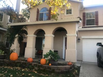 Rocklin Single Family Home For Sale: 6529 Turnstone