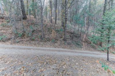 Placerville Residential Lots & Land For Sale: 1616 Broadway